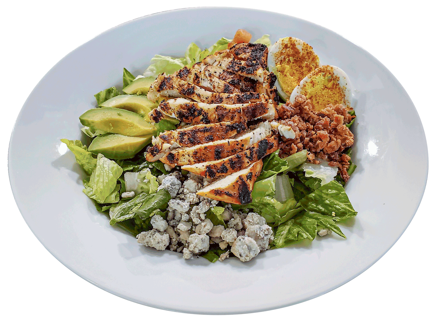 Chicken Salad with Avocados on a white plate